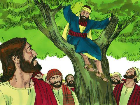 Jesus on your Jericho Road: A Sycamore Tree, Symbolism of Regeneration