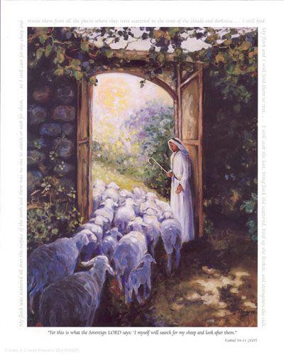 JESUS, THE 'SHEEPGATE': EXCLUSIVE CLAIM BEYOND PANDEMIC.