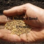 Living Kingdom Identity: Dying to flourish like Mustard Seed.