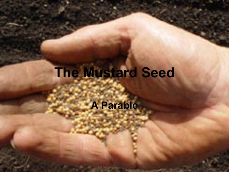 Living Kingdom Identity: Dying to flourish like Mustard Seed.